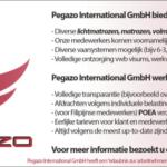 Pegazo International GmbH