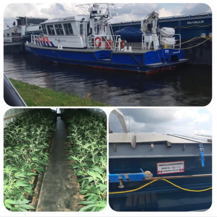 hennepkwekerij op schip