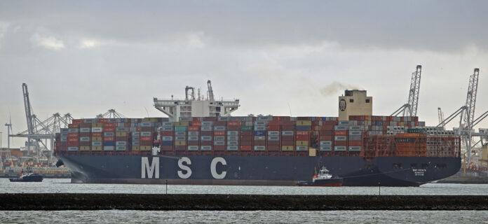 MSC Rifaya in Rotterdam